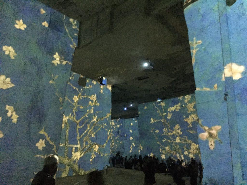 Visiting Van Gogh Carrieres et Lumieres Les Baux de Provence
