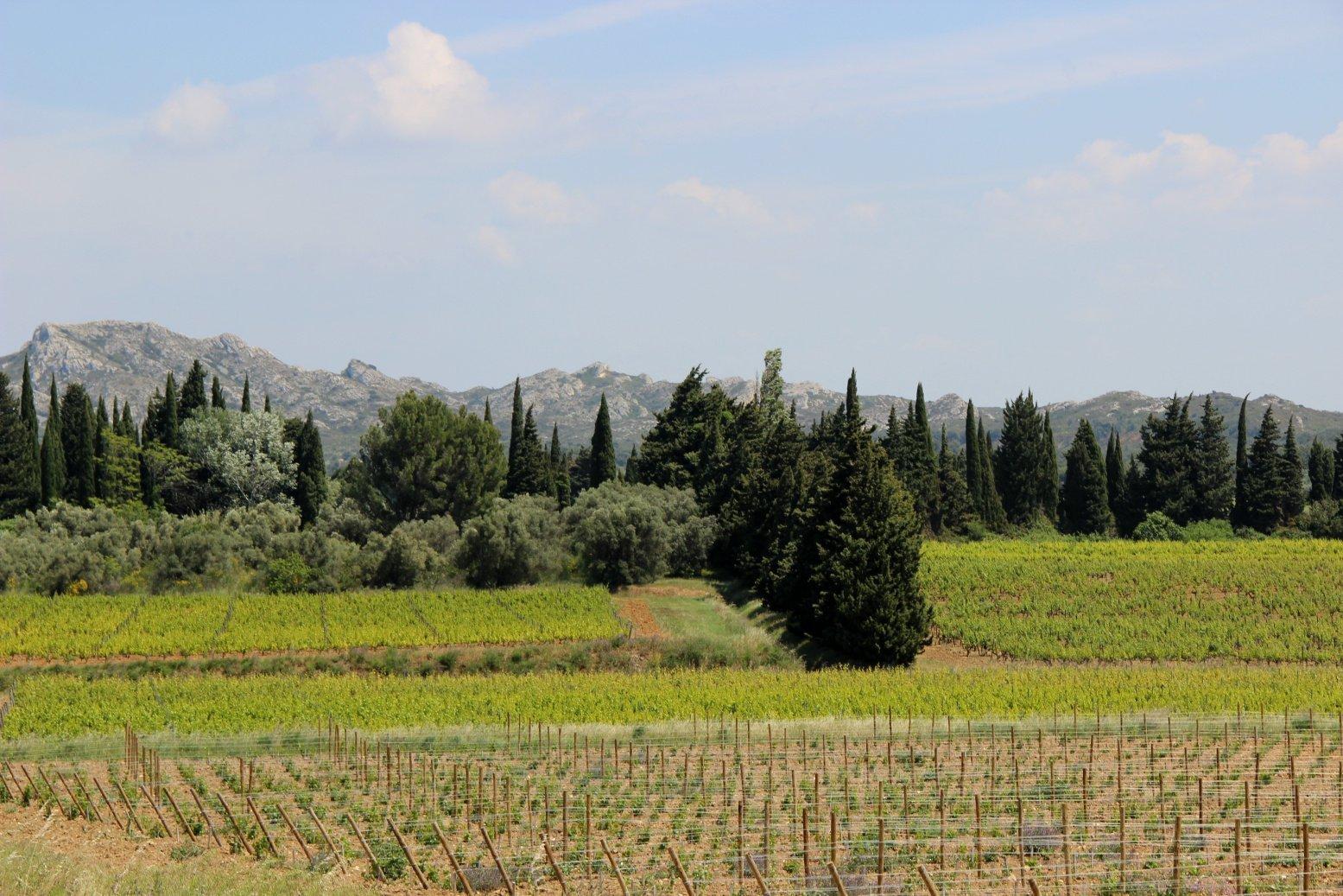 Roussillon et les Baux 5
